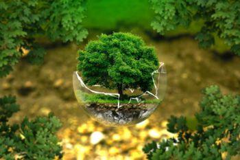 Letošnji svetovni dan Zemlje namenjen zelenim tehnologijam in inovacijam za obnovo ekosistema