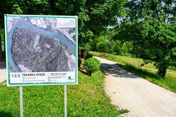 V gozdu Portoval bo urejena nova pot za pešce in kolesarje