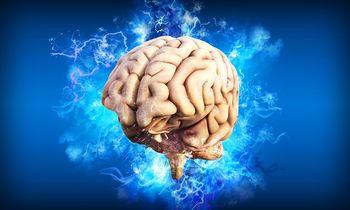 Skupni informativni dan magistrskega programa Kognitivna znanost