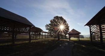 Dan odprtih vrat za starejše v občini Šentrupert