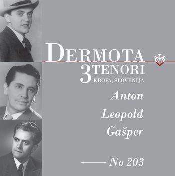 Zaključek Dermotovega leta z odprtjem Dermotove sobe v Korotanu na Dunaju