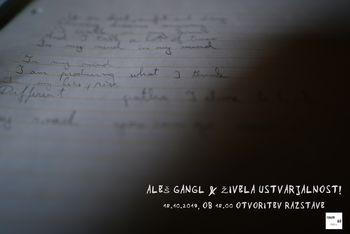 Aleš Gangl & Živela ustvarjalnost!