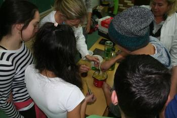 Čebelarsko popoldne na Osnovni šoli Bled