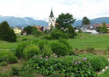 Hortikultura v Lescah