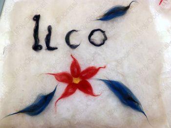 Vabilo na letni zbor Društva invalidov ILCO za Koroško