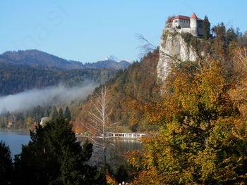 Praznik Občine Bled in srečanje objezerskih krajev Slovenije