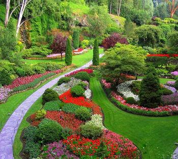 Eurogardnovi vrtnarski nasveti za MAJ