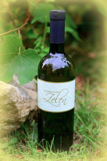 Univerzitetni zelen 2012 - protokolarno vino Občine Vipava