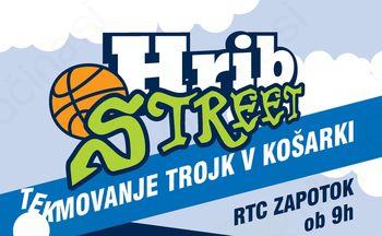 Tekmovanje trojk v košarki HRIB Street 2015