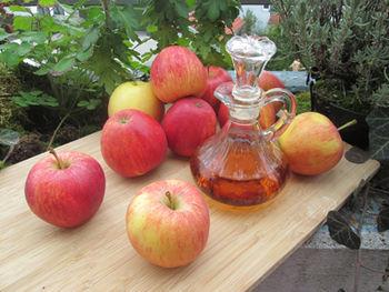 Predavanje Priprava sadja za sušenje in kisanje