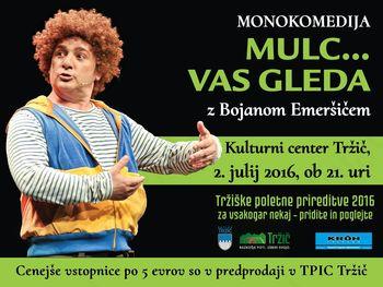 Mulc vas bo gledal v Kulturnem centru