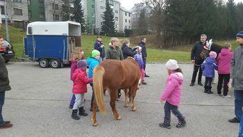 Novoletno druženje s konji