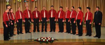 Koncert MPZ Vidovo