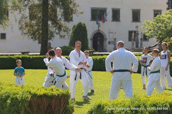 Karateisti trenirajo telo in duha