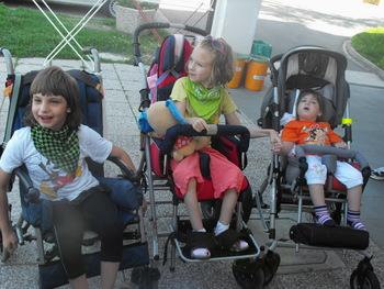 Sonček Društvo za cerebralno paralizo Ptuj