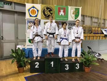 53.mednarodni turnir Nagaoka 2016