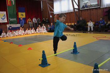 2. Pustni judo turnir  Duplek 2018
