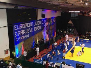 Evropski članski pokal v judo