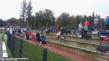 Ekipno osnovnošolsko tekmovanje v atletiki za OŠ Koroške