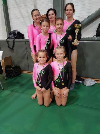 Odprto prvenstvo v gimnastiki
