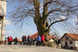 Pohod Primskovo ob dnevu žena odpovedan