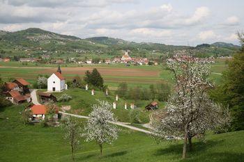 Občina Šentrupert praznuje