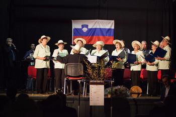 7. koncert MePZ DU Šentrupert