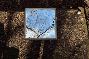 Odprtje  fotografske dokumentarne razstave Življenje gozdnega ogledala v Parku Pečno