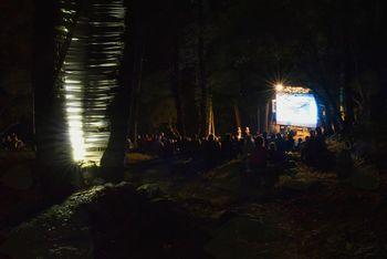Kino v gozdu