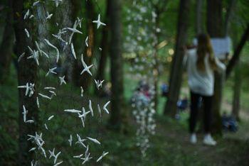 Jesenska razstava v parku Pečno