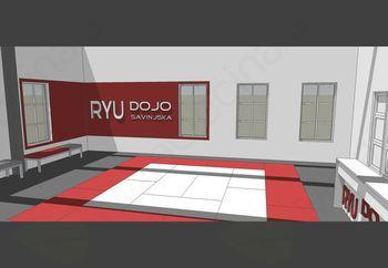 Klub Ryu Dojo Savinjska