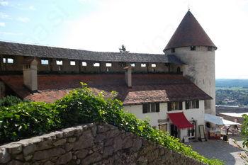 Ta veseli dan kulture na Blejskem gradu