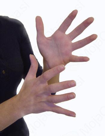 Tečaj slovenskega znakovnega jezika