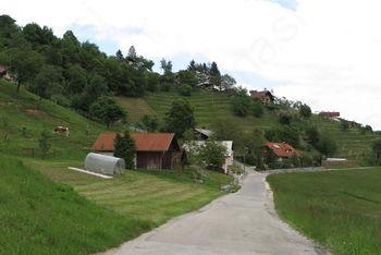 Sanacija plazu Bovše in obnova lokalne ceste