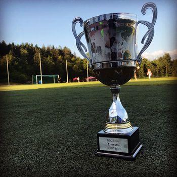 Uspešen zaključek nogometne sezone v NK Trebnje