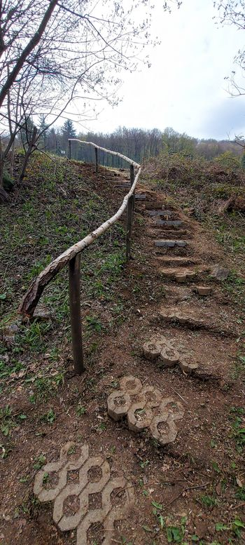 Planinsko društvo Trebnje – popravilo pohodnih poti.
