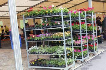 Turistične novice iz TD Frankolovo: 7. golaž žur in razpis za priznanje grajskega vrtnarja