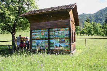 Pridružite se najbolj množični predstavitvi čebelarstva v Sloveniji in Apel za pravilno uporabo FFS