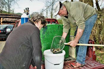 Donatorja poskrbela za nov ribji zarod