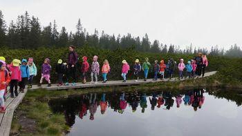 Mavrični planinčki na Lovrenških jezerih