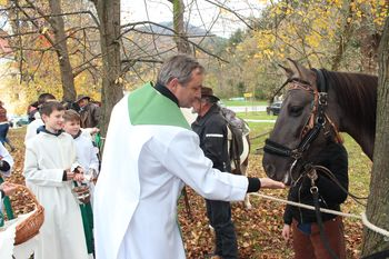 Tradicija blagoslova konj na Frankolovem