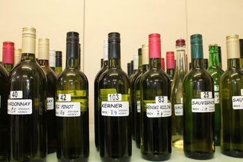 Vinogradniško-vinarsko društvo Vojnik: Ocenjevanje vin, salam in špehovk