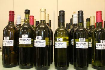 Zbiranje vzorcev vin in salam