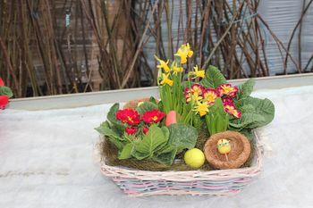 Izberimo cvetoče darilo