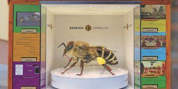 Nova visokotehnološka čebelarska atrakcija 3D-kranjica predstavljena javnosti