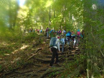 Mladi planinci iz Nove Cerkve na prvem planinskem pohodu