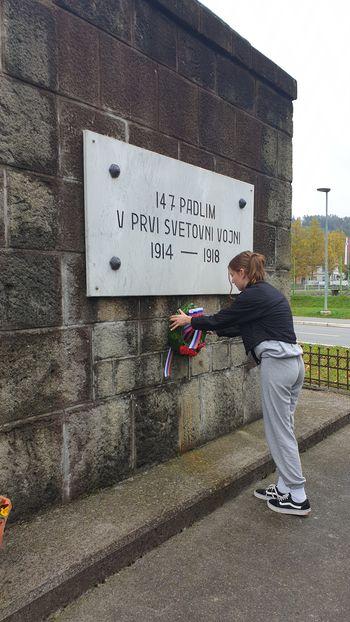 Foto utrinki: Komemoracija na Dobrotinu in v Vojniku