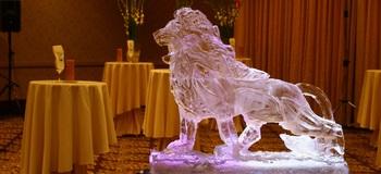 """Predstavitev """"ledenega umetnika"""""""