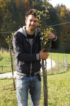 Pravilna rez rastlin za zdrav in obilen pridelek