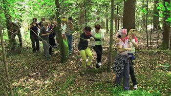 Delavnica o gozdni pedagogiki v Blatah pri Rečici ob Savinji